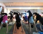 009_yoga_expo_2013_small_20130119